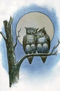 owls-in-full-moon
