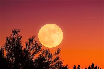 harvest-moon-1828012_640