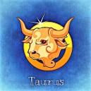 bull-759381__340 (2)